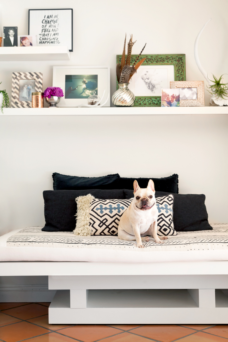SiriBerting, SiriBertingPhotography, Interiors, Home Decor, Dog, Shelving designs